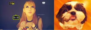 Bommie and Choco by snowflakeVIP