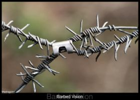 Barbed Vision by madragonn