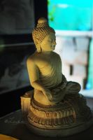 Buddha Light and shade view by Lensamson