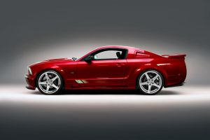 Red Saleen by lovelife81