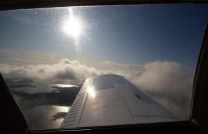 Wing view by werneri