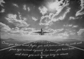 ''Once you have tasted flight''... by XeNzO