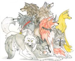 WildSpirit's Wolves by CaptainMorwen