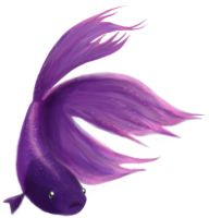 Betta Fish by Phran-kill-in