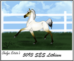 5093 SES Lithium by Shayla-Estate