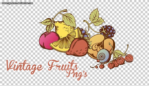 Fruit PNG's by xGoshox