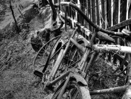 Bikes by TheNimster