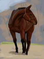 Daily Study #9: Horse by Brainmatters