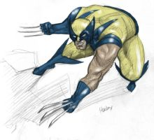 wolvie color sketch by ehurley