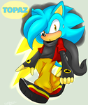 (GIFT) Topaz the Hedgehog by SonicForTheWin2