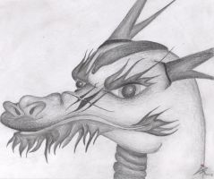 dragon head by Abstract-scientist