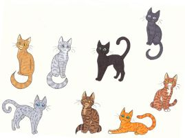 Warriors by CaptainMorwen