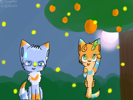 :AT: Fireflies and.. Oranges? by TrancedRasi