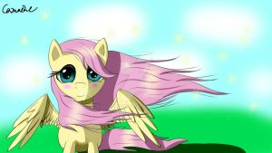 Wind fluttershy by Camaine