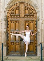 Ballet on Door by balletbutt16