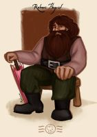 Order of the Phoenix - Rubeus Hagrid by aidinera