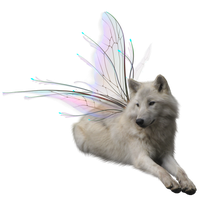 Winged Wolf.PNG_by_Stock-of-All-Things by Stock-of-All-Things