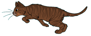 ThunderClan - Dustpelt by WildpathOfShadowClan
