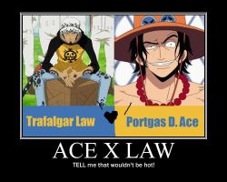Ace X Law Motivator by Zehot-guys-are-hot