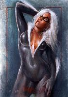 Black Cat SM archives 48 by charles-hall
