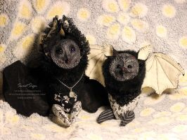 Noble Bats by SweetSign