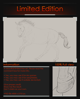 Limited line-art warmblood by Valanee
