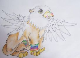 rainbow griffin by Drrrakonis