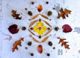 Natural object (Autumn) Mandala Installation by GenG123456789