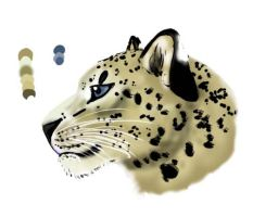 Snow leopard by Aleakcim