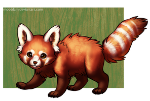 Red Panda by Mootdam