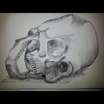 Skull - Ink Painting by 13nick42