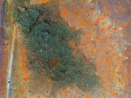 Texture 10 by Tripglyph