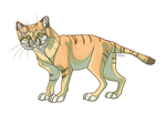 Week 2. Sand cat by Moldovorot