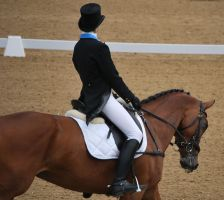 Dressage 24 by equinestudios
