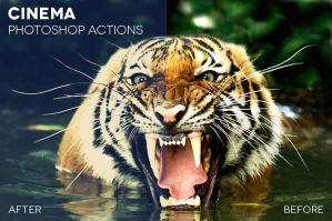 Cinema Photoshop Actions by photographypla-net