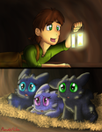 When Hiccup Meets The Cubs by PandaFilms