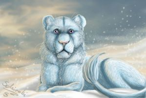 snowborn by Schiraki