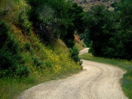 Long and Winding Road by jccowles