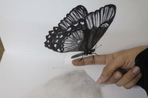 Butterfly 3D..3 by Angelii-D
