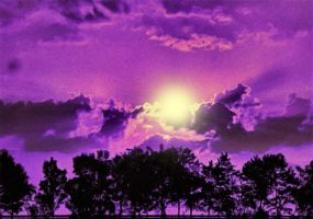 Purple Haze by montag451