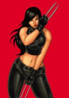 x-23 colors by funeralwind