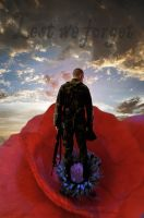Lest We Forget by Shirley-Agnew-Art