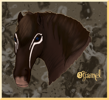 Equine Style Meme: Realism by OpalSkye
