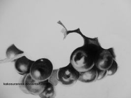 Realistic Grapes in Black and White by kakosuranosx
