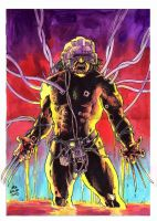weapon X by ayk66