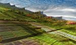 Pythagorean gardens and village by Vidom