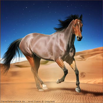 HEE Horse Avatar - FHF Sethos by art-equine