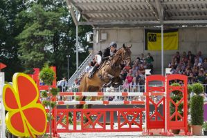 3DE Show Jumping Phase Stock 78 by LuDa-Stock