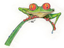 Tree Frog by jake10684