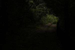 down the dark path by rayna23